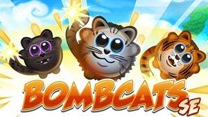 Взломанная Bombcats Special Edition - верни котят домой